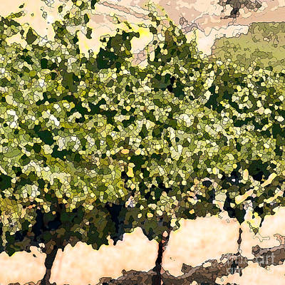 In The Vineyard Print by Artist and Photographer Laura Wrede