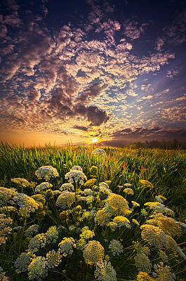 In This Moment We Are Infinite Print by Phil Koch