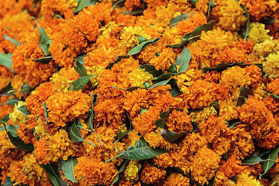 India, Delhi, Heap Of Marigold Offerings Print by Alida Latham