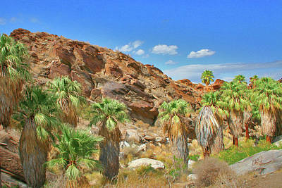Indian Canyons View In Palm Springs Print by Ben and Raisa Gertsberg