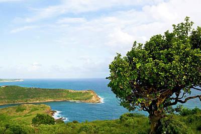 Indian Creek Point, Antigua, West Indies Print by Nico Tondini