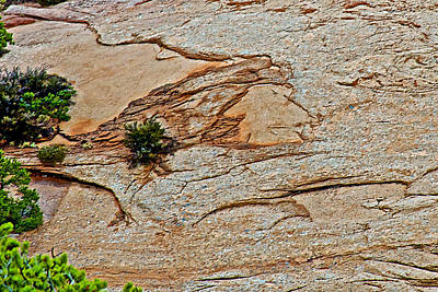 Indian Face In Rock Dome In Navajo National Monument-arizona Original by Ruth Hager