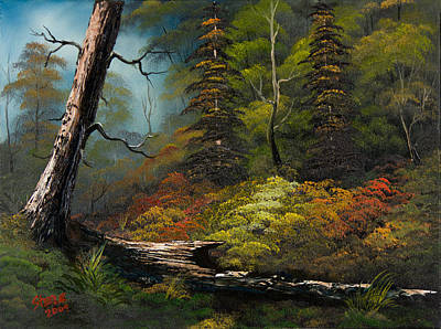 Bob Ross Style Painting - Secluded Forest by C Steele