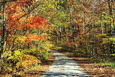 Indiana Back Road In Watercolor Print by Lorna Rogers Photography