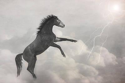 Photograph - Indigo Lightning by Pamela Hagedoorn