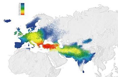Indo-european Language Origins Print by Mikkel Juul Jensen