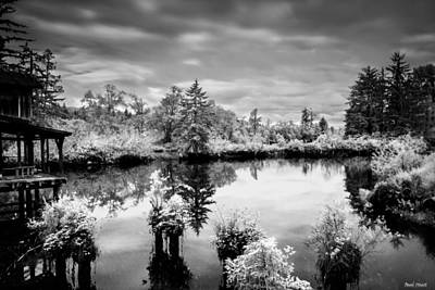 Infrared Fish Dock 2 Print by Paul Haist