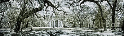 Infrared Panorama Of Old Ruin And Forest Print by John Wollwerth