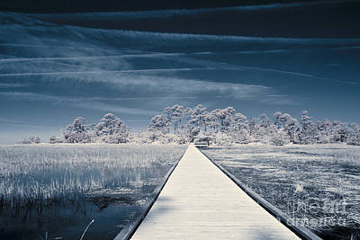 Infrared Shot Of Path Over Water Print by John Wollwerth