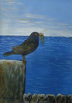 Spiddal Painting - Inis Meain 16 Starling by Roland LaVallee