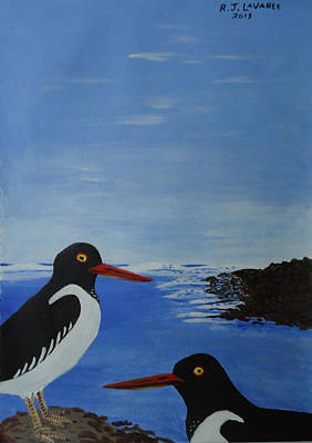 Spiddal Painting - Inis Meain 21 Oyster Catchers by Roland LaVallee