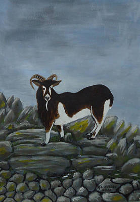 Spiddal Painting - Inis Meain 4 Goat by Roland LaVallee