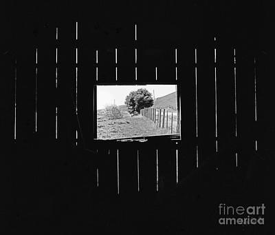 Farms-n-barns Photograph - Inner Barn Space by Andre Sorrelle