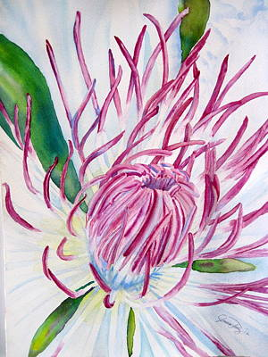 Inside The Clematis Print by Joann Perry