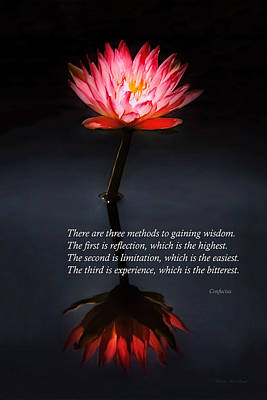 Parable Photograph - Inspirational - Reflection - Confucius by Mike Savad