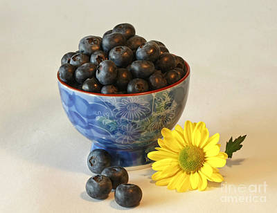 Inspired By Blue Berries Print by Inspired Nature Photography Fine Art Photography