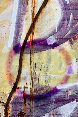 Spray Paint Photograph - Interconnected by Carol Leigh
