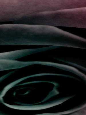 Soft Photograph - Into Eternity by  The Art Of Marilyn Ridoutt-Greene