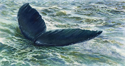Into The Deep Print by Connie Ely McClure