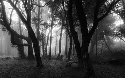 Mystic Setting Photograph - Into The Mystic by Marco Oliveira