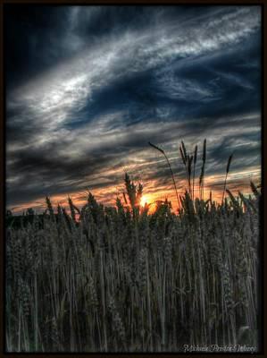 Hdr Photograph - Into The Night by Michaela Preston