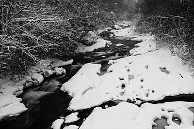 Into The Snowy Wilderness Print by Photography  By Sai