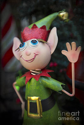 Elf Photograph - Introduce Yours-elf by Evelina Kremsdorf