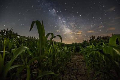 Moonrise Photograph - Iowa Corn by Aaron J Groen