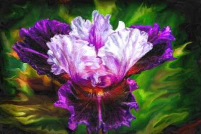 Acrylic Digital Art - Iridescent Iris by Lilia D