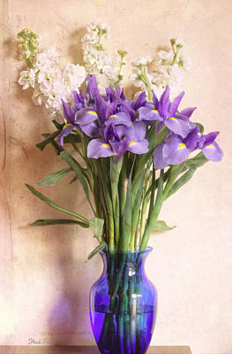 Iris And Stock  Print by Heidi Smith