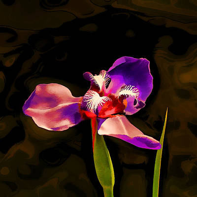 Irises Digital Art - Iris And The Glamour Shot by Wendy J St Christopher