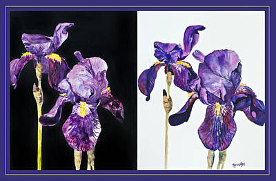 Iris Contrasted Original by Karen Ann