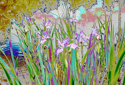 Painting - Iris Garden by Virginia Bond