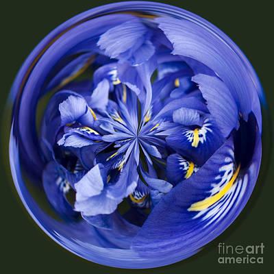Manipulation Photograph - Iris Orb by Anne Gilbert
