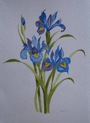Mums Painting - Irises by Carol De Bruyn