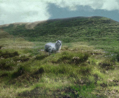 Irish Countryside Print by Kandy Hurley