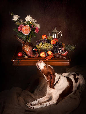 Irish Red And White Setter With Fruits... Print by Tanya Kozlovsky