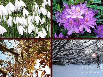 Snow-covered Landscape Mixed Media - Irish Seasons by Patrick J Murphy