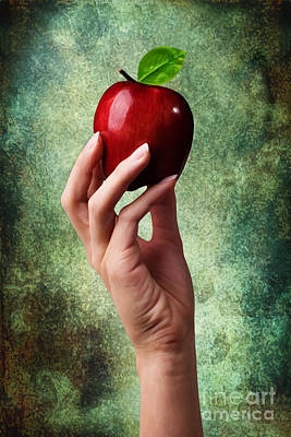 Vertical Photograph - Irresistible Red Apple by Cindy Singleton