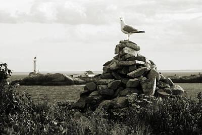 Nature Photograph - Isles Of Shoals by Brett Pelletier