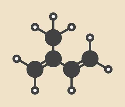 Polymer Photograph - Isoprene Rubber Building Block Molecule by Molekuul