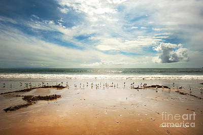It Was A Sunny Day At The Beach From The Book My Ocean Print by Artist and Photographer Laura Wrede