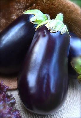 Italian Purple Eggplant Print by Michael Dagostino