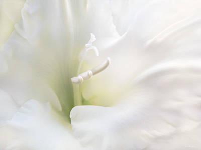 Ivory Gladiola Flower Print by Jennie Marie Schell