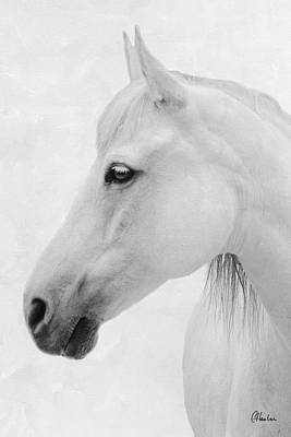 Ivory Spirit White Print by Christine Hauber