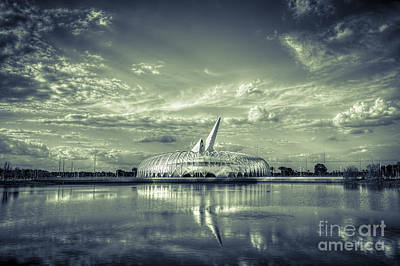 Ivory Tower Of Knowledge- Split Tone Print by Marvin Spates