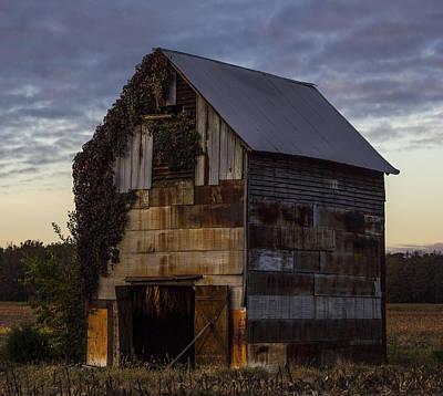 Murray Kentucky Photograph - Ivy Barn by Amber Kresge