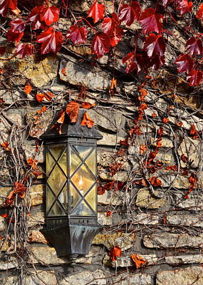 Ivy Lantern Print by Frozen in Time Fine Art Photography
