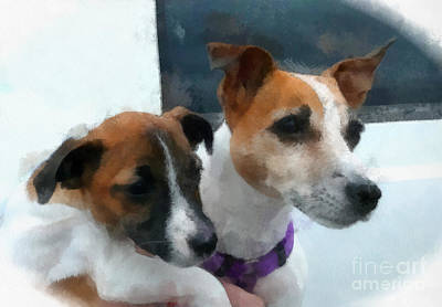 Jack Russells Original by Betsy Cotton