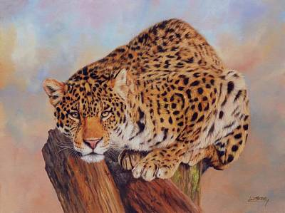 Jaguar Print by David Stribbling